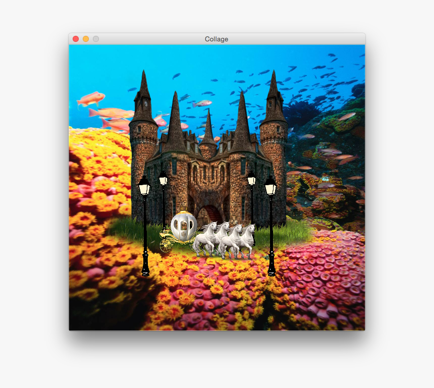 Screen Shot 2015 02 01 At - Flow Of Energy In Coral Reef, HD Png Download, Free Download