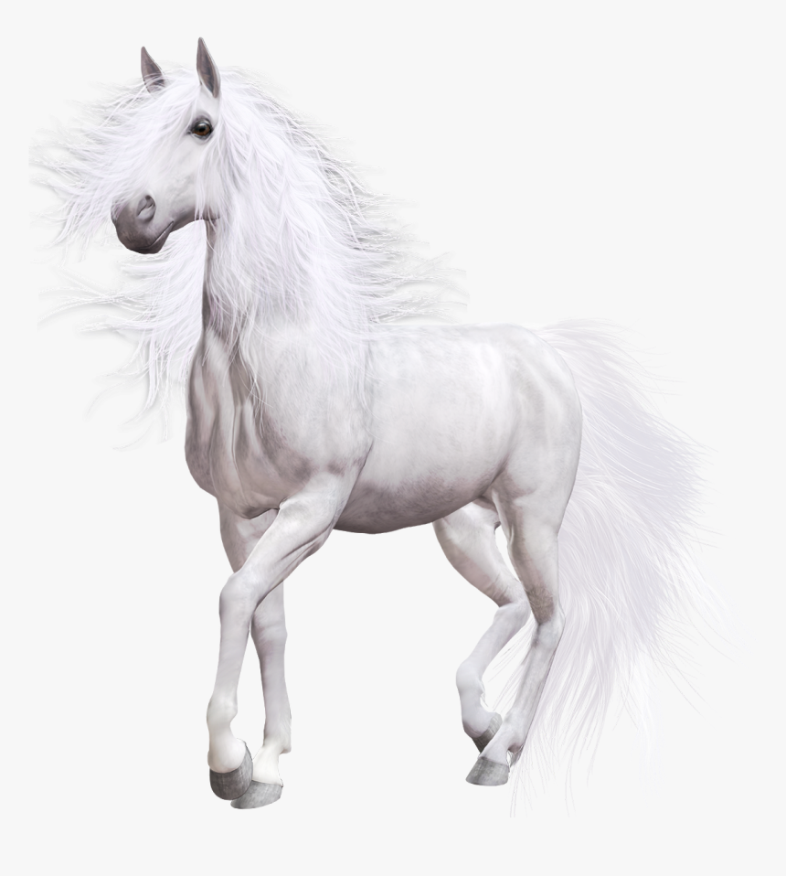 White Horse Png Clip Art - Transparent Background White Horse Png Transparent, Png Download, Free Download