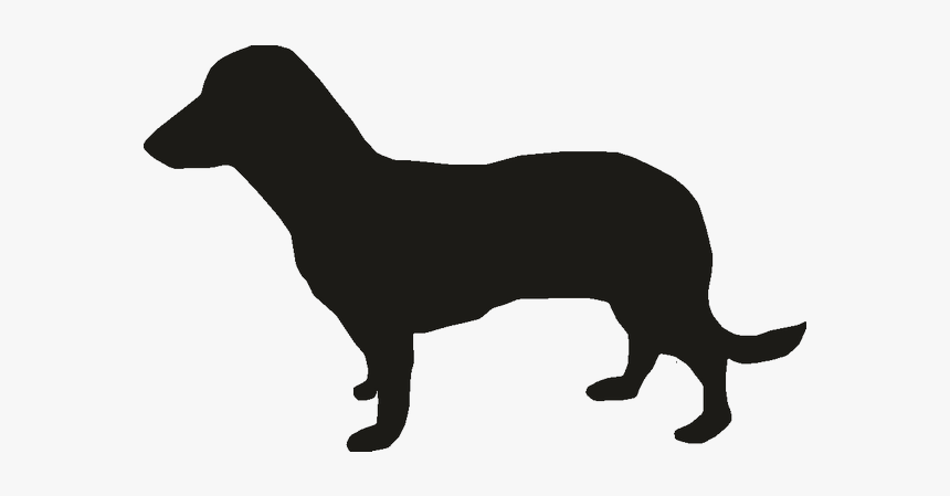 Miniature Dachshund Puppy Vector Graphics Dog Breed - Mini Dachshund Outline, HD Png Download, Free Download