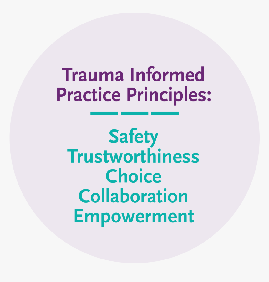Trauma Informed Practice Principles - Modaal Just Killin, HD Png Download, Free Download