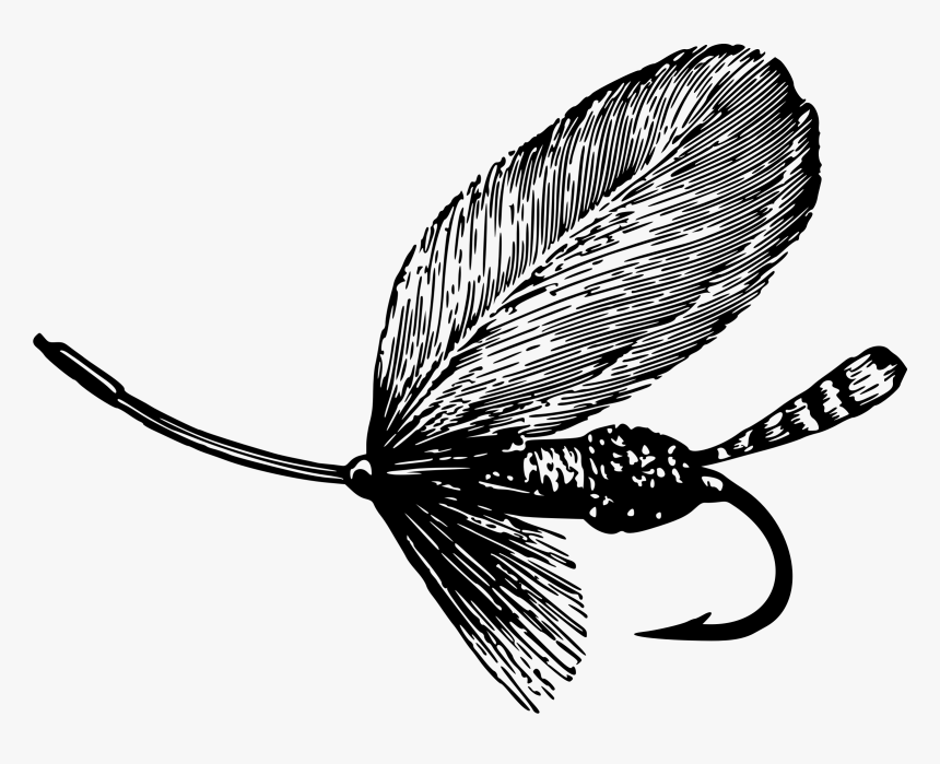 All Photo Png Clipart - Fly Fishing Images Black And White, Transparent Png, Free Download