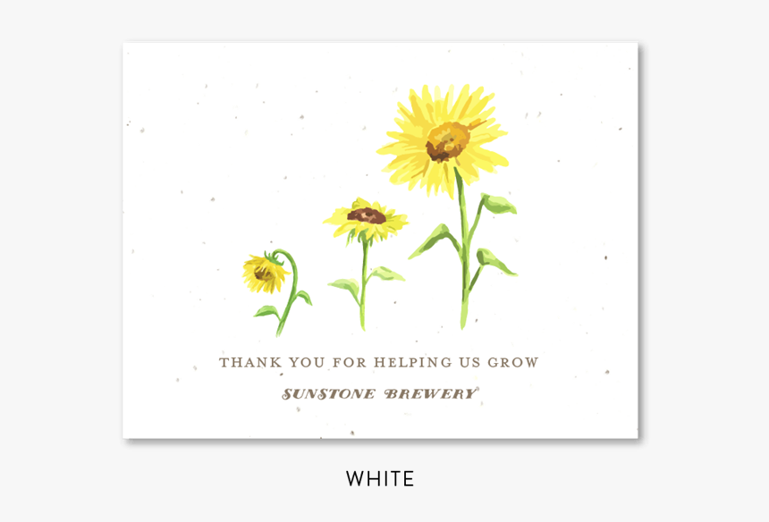 Sunflower Business Thank You Cards Sunflower To Invitation