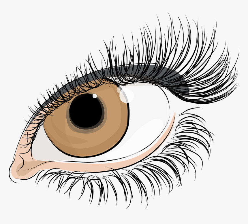 Eyelash Extensions,close Up,eye - Lashes Eyes Transparent Background, HD Png Download, Free Download
