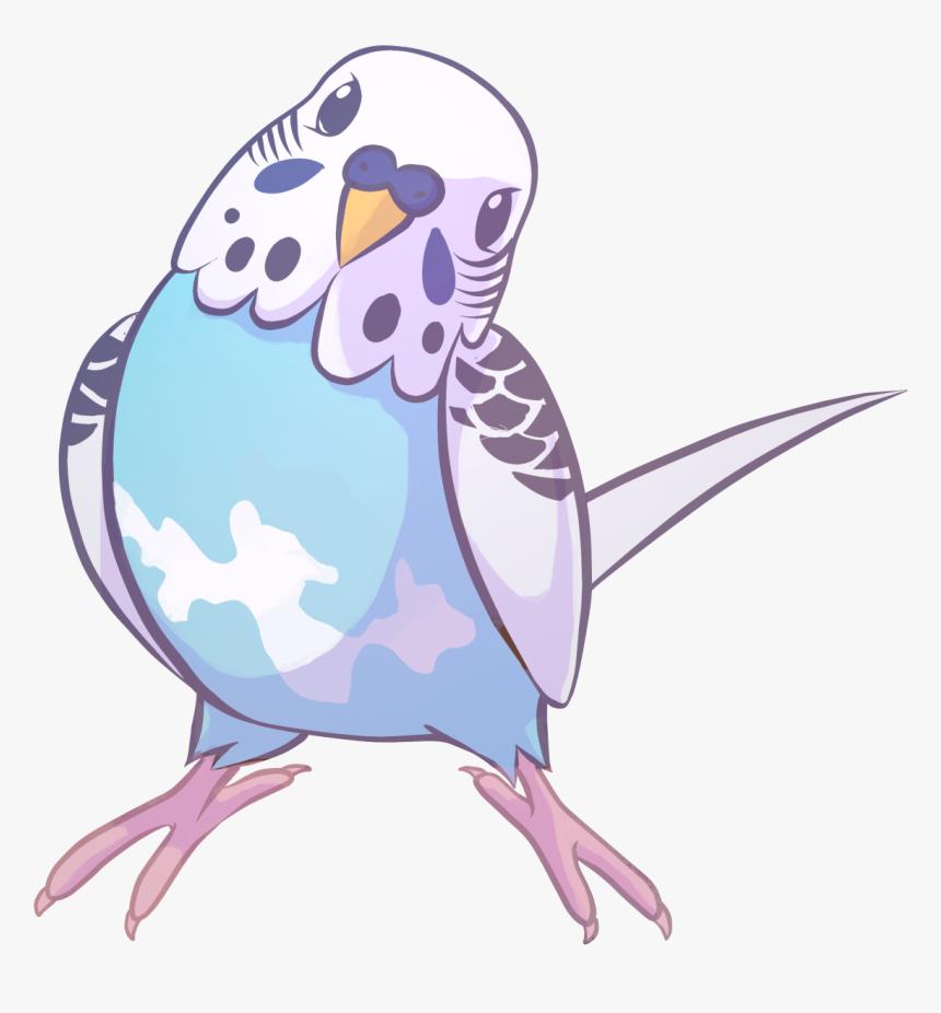 Drawing Parakeet, HD Png Download, Free Download