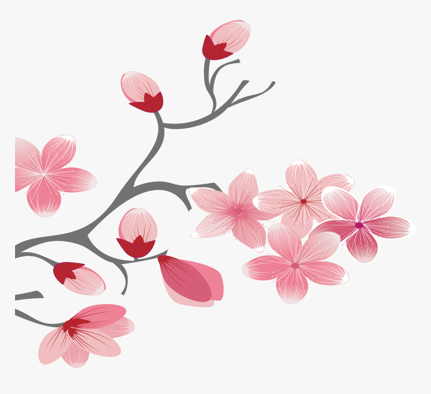 Branch Vector Elegant - Cherry Blossom, HD Png Download, Free Download