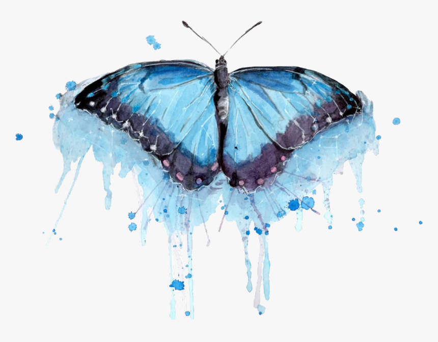 Transparent Watercolor Butterfly Png - Butterfly Watercolor Paint Png, Png Download, Free Download