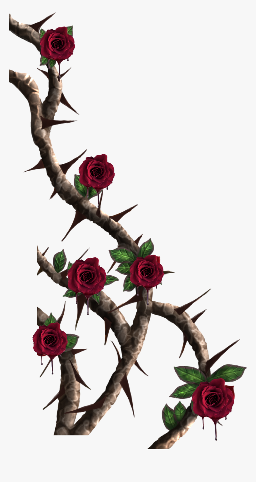 Rose Vine Png, Transparent Png, Free Download