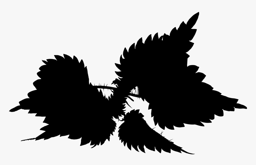 Font Silhouette Beak Sky - Pigeons And Doves, HD Png Download, Free Download