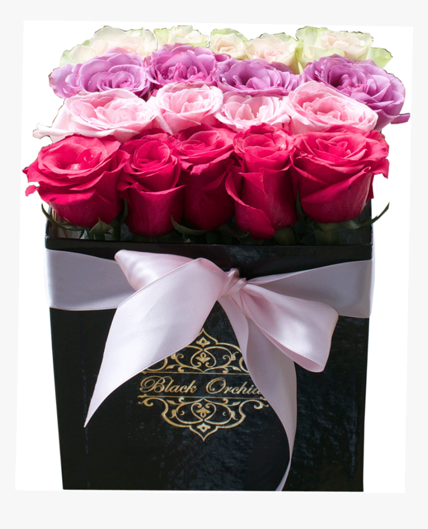 Patricia, Roses In The Box, Flowers In The Box, Box - Box Of Roses Png Transparent, Png Download, Free Download