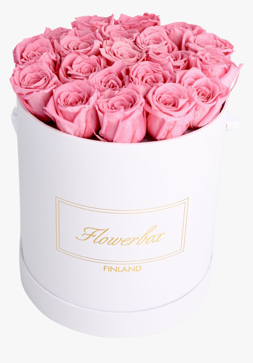 Garden Roses, HD Png Download, Free Download
