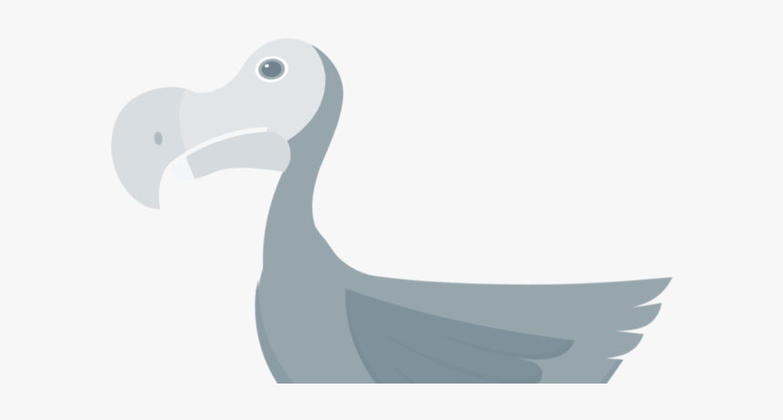 - Dodo, HD Png Download, Free Download