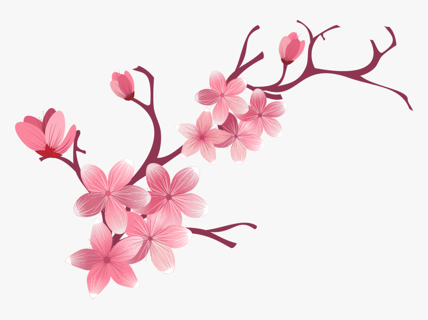 Cherry Blossom And Butterfly Png - Butterfly Png Pink Cherry Blossom, Transparent Png, Free Download