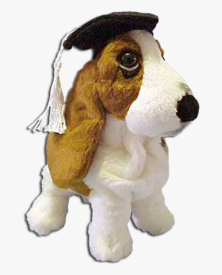 Graduation Hushpuppy Basset Hound Puppy Dog Introduced Cuddly Collectibles Dog Hd Png Download Kindpng