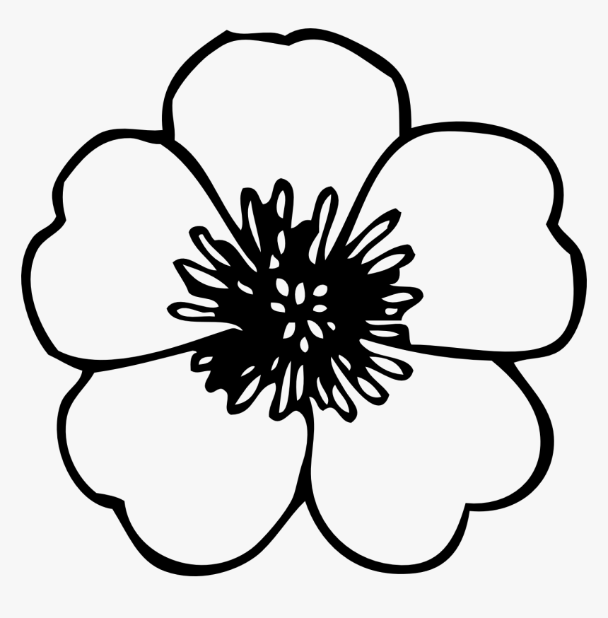 Simple Flower Clipart Black And White Poppies Black And White