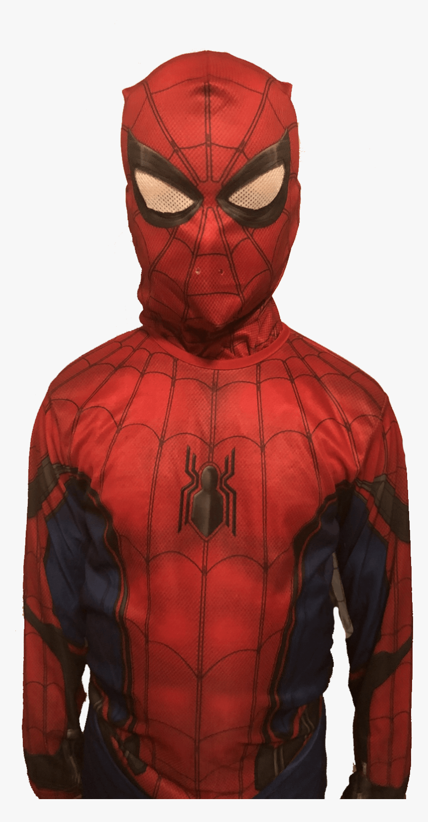Spiderman Standing Up, HD Png Download, Free Download