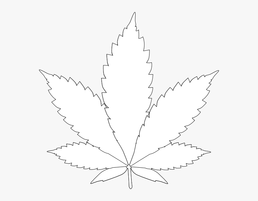 daun ganja clip art png download toronto maple leafs transparent png kindpng daun ganja clip art png download