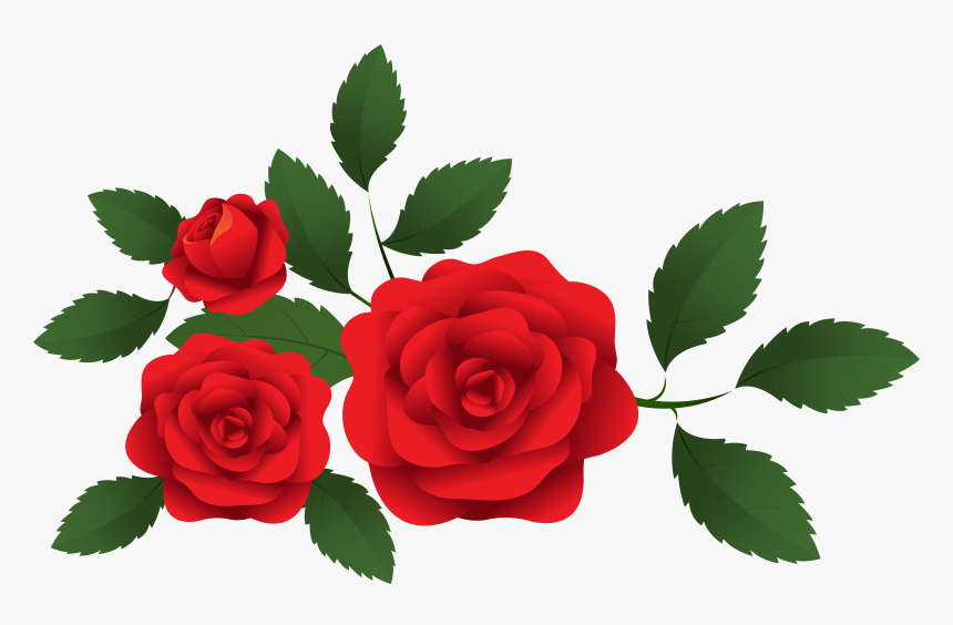 Transparent Beauty And The Beast Rose Clipart - Red Roses Clip Art, HD Png Download, Free Download