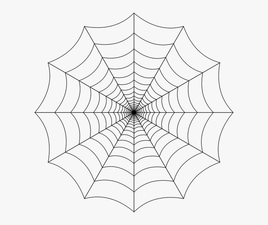 Spider Web, Cobweb, Spider, Web, Nature, Trap, Insect - Spider Web Png Transparent, Png Download, Free Download