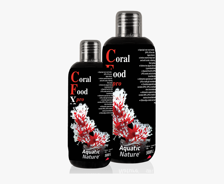Coral Food - Aquatic Nature, HD Png Download, Free Download