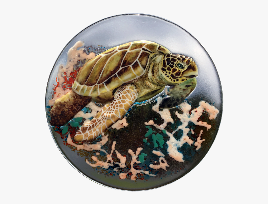 Sea Turtle With Coral In Browns - Kemp's Ridley Sea Turtle, HD Png Download, Free Download