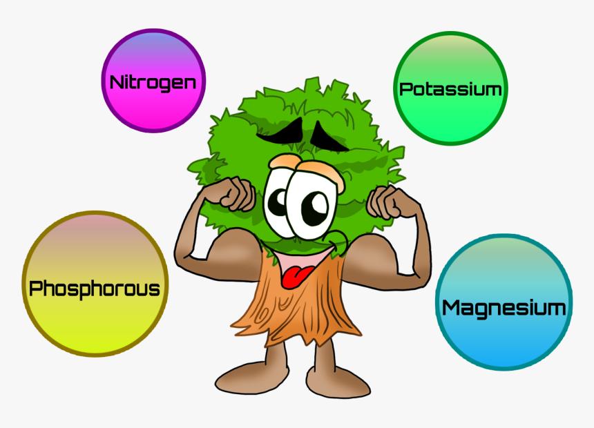 Nutrients For Plants Clip Art Plant Nutrition Clip Art Hd Png Download Kindpng