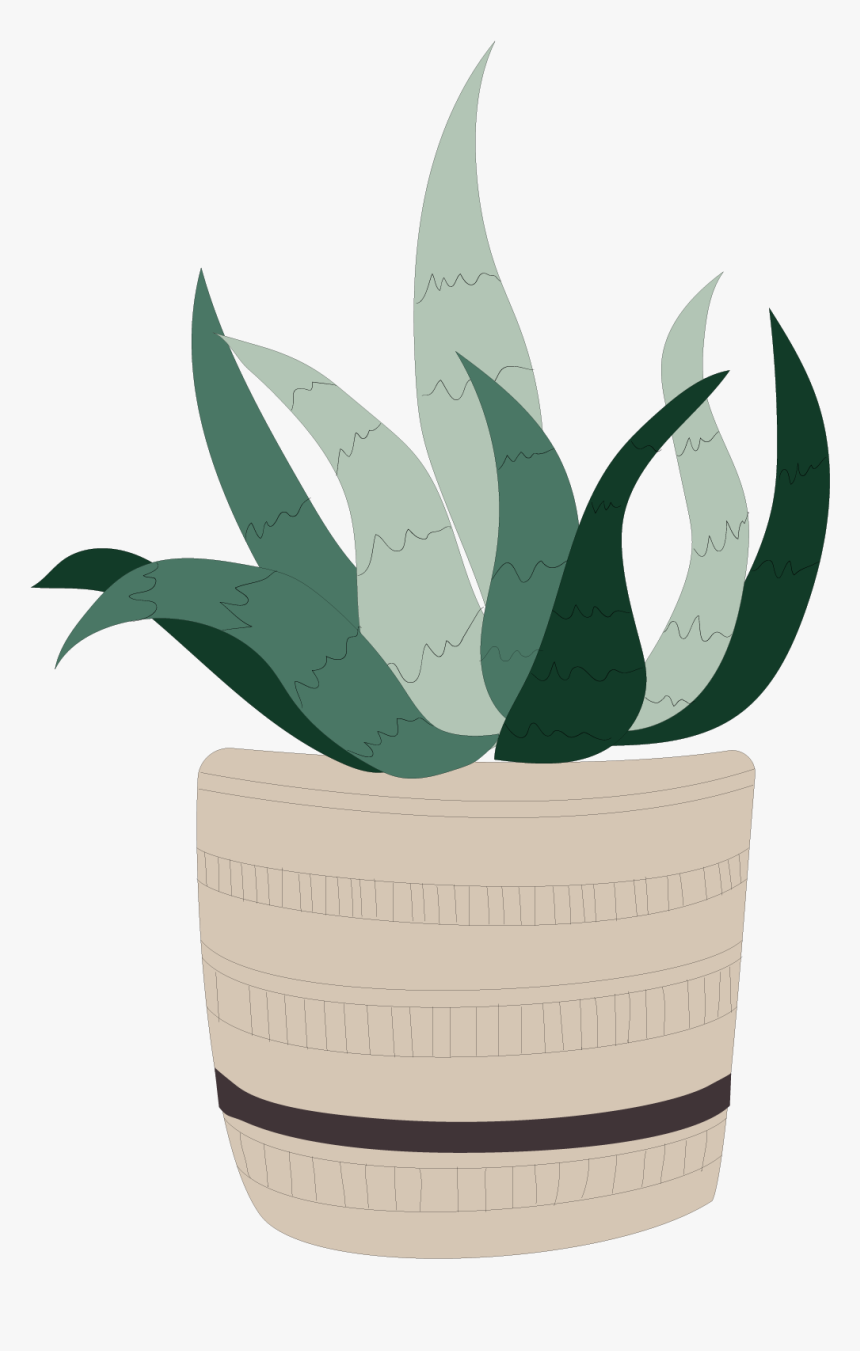 Houseplant, HD Png Download, Free Download