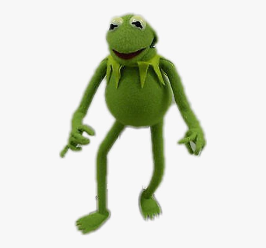 True Frog , Png Download - True Frog, Transparent Png, Free Download