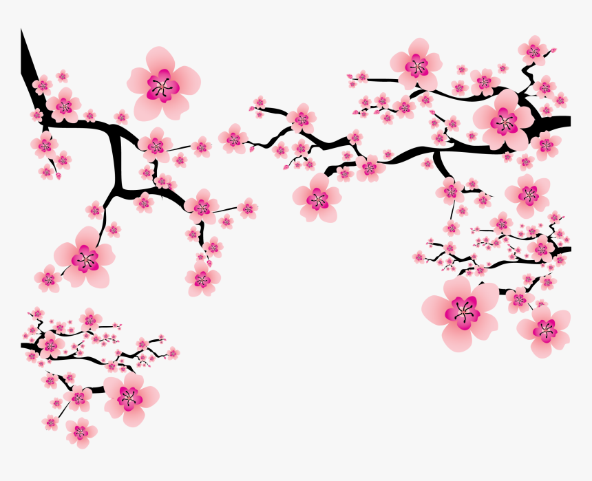 Cherry Blossom Branch Png - Transparent Cherry Blossom Png, Png Download, Free Download