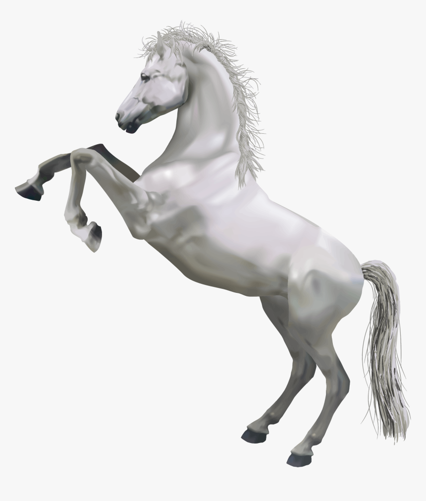 Horse Png Pic - White Horse Png, Transparent Png, Free Download