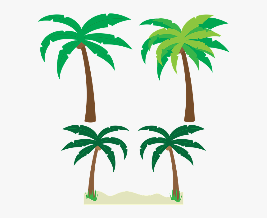 Palm Tree Vector Png , Transparent Cartoons - Tropical Palm Trees Clipart, Png Download, Free Download