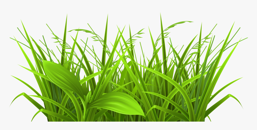 Grass Black And White Grass Clip Art Images - Full Hd Png Grass, Transparent Png, Free Download