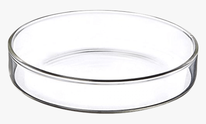Petri Dishes Made Of Glass Can Be Sterilized By An - Bangle, HD Png Download, Free Download