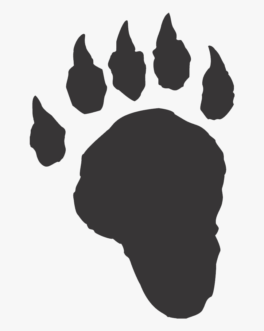 Transparent Volleyball Silhouette Png - Foresters Lake Forest College, Png Download, Free Download