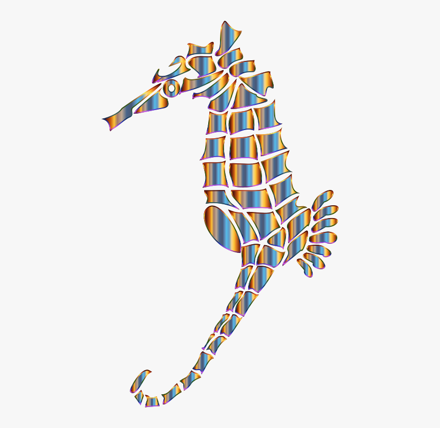 Chromatic Stylized Seahorse Silhouette No Background - Seahorse, HD Png Download, Free Download