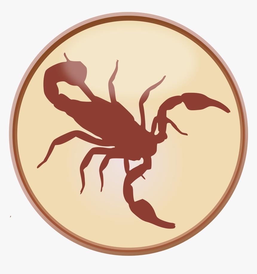 Crab, Signs Of The Zodiac, Zodiacal Sign, Star Sign - Mentahan Logo Kalajengking, HD Png Download, Free Download