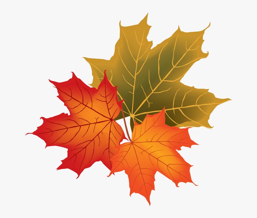 Fall Leaves Vector Png Transparent Cartoons Fall Leaves Vector Png Png Download Kindpng