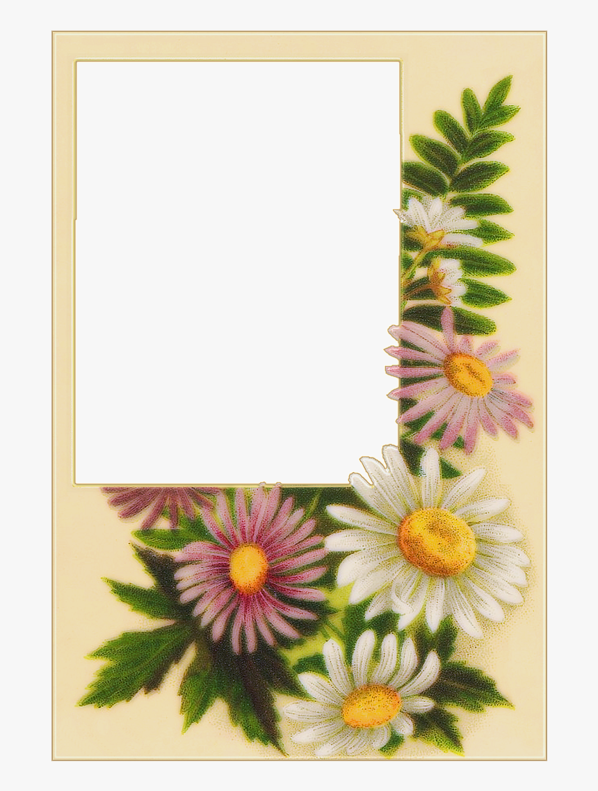 Sunflower Wedding Frame With Transparent Background Hd Png