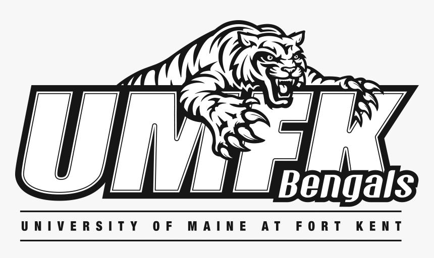 "University Of Maine At Fort Kent Bengals Men""s Basketball - University Of Maine At Fort Kent, HD Png Download, Free Download"