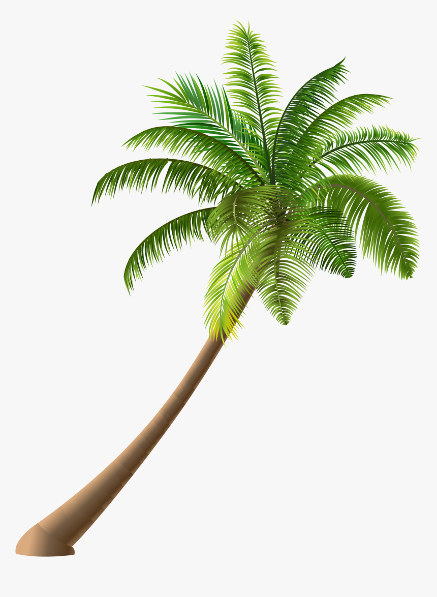 Summer Coconut Simple Illustration Royalty-free Green - Cartoon Many Coconut Tree, HD Png Download, Free Download