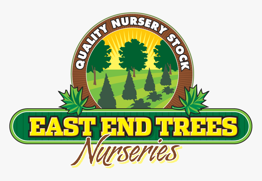 East End Trees - Illustration, HD Png Download, Free Download