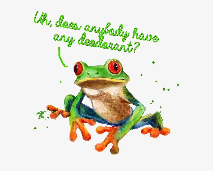 Transparent Red Eyed Tree Frog Clipart - Skunk Frog, HD Png Download, Free Download