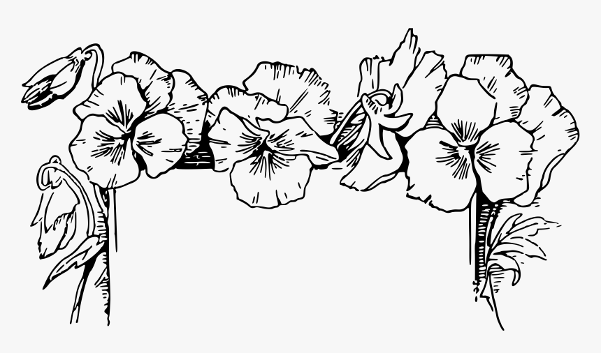 Flower Border Clipart Black And White, HD Png Download, Free Download