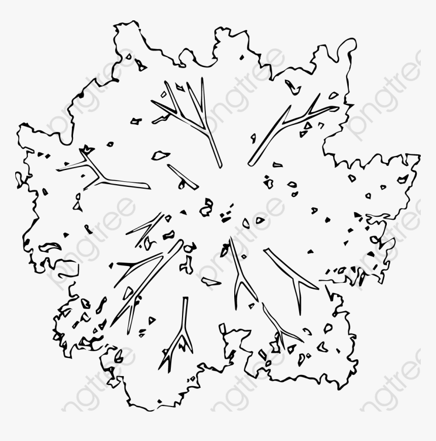 Transparent Pan Clipart - Tree Top View Png Black And White, Png Download, Free Download