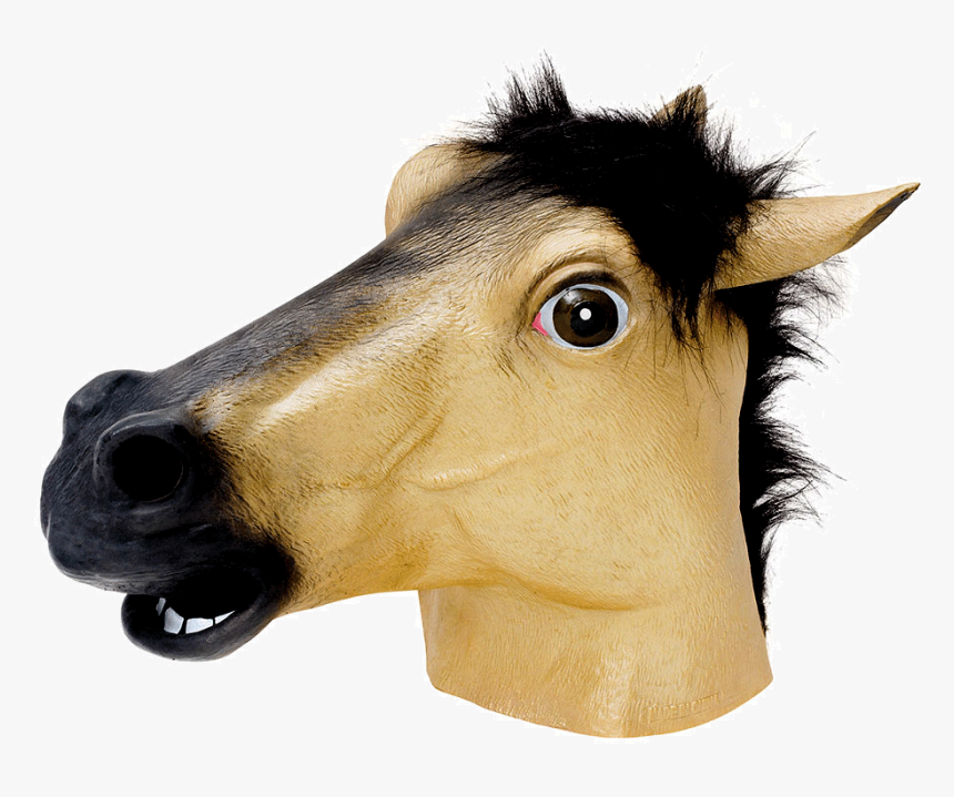 Horse Face With Transparent, HD Png Download, Free Download
