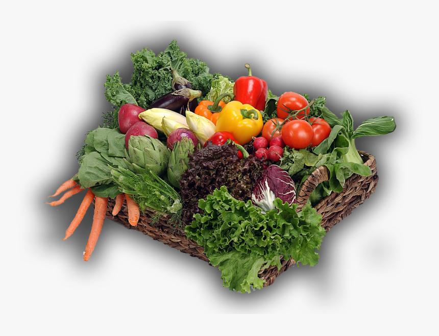 Vegetables In Garden Png, Transparent Png, Free Download