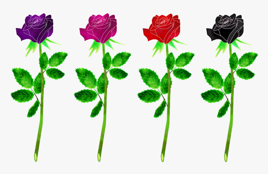 Roses Flowers, Plant, Rose, Gradient, Flowers, Leaf - Rose, HD Png Download, Free Download