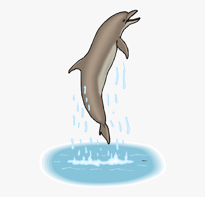 Transparent Background Jumping Dolphins Gif, HD Png Download, Free Download