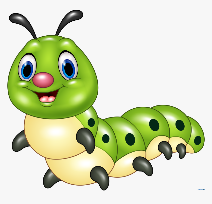 Light Green Caterpillar Cartoon Picture Of Insects Hd Png
