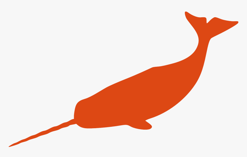 Narwhal Whale Fish Free Photo - Narwhal Silhouette Vector, HD Png Download, Free Download