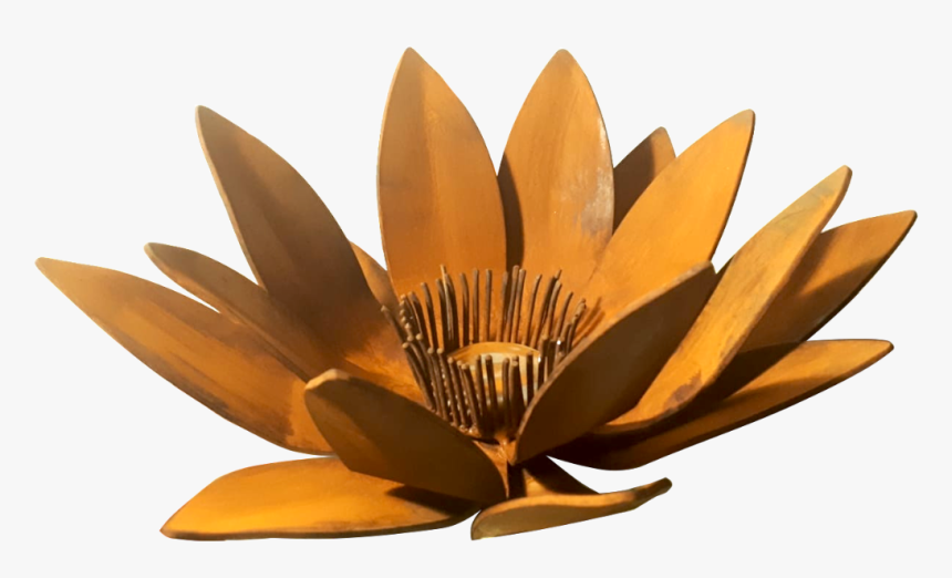 Flor De Loto Escultura - Sacred Lotus, HD Png Download, Free Download